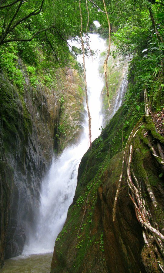 Klong Neung #waterfall in Koh Chang, how to get there and more at Explorekohchang.com: