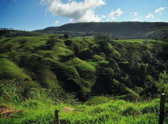 Paysage de Monteverde