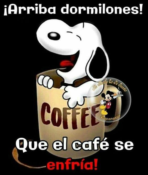 El café se enfría