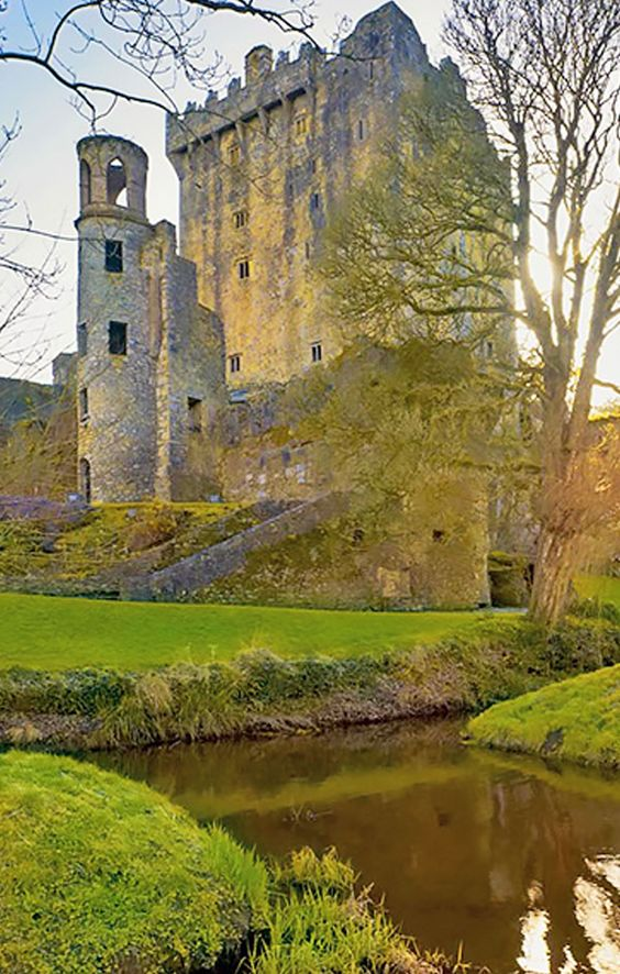 Explore historical castles on a trip to County Limerick, Ireland: