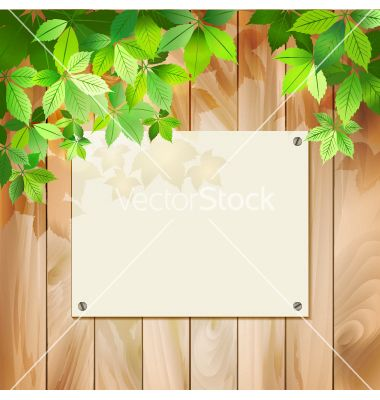 Green leaves on a wood texture background vector 1186252 - by kostins on VectorStock®
