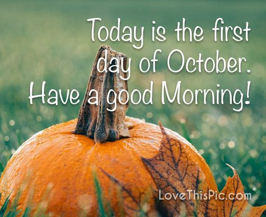 Today Is The First Day Of October Good Morning Pumpkins October Be Good Hello October Hello October Quotes October Quo October Quotes October New Month Quotes