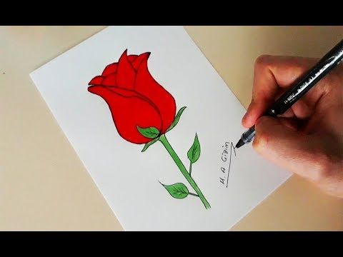 Gul Nasil Cizilir Adim Adim Kolay Gul Cizimi How To Draw A Rose Very Easy Youtube Cizim Guller Resim
