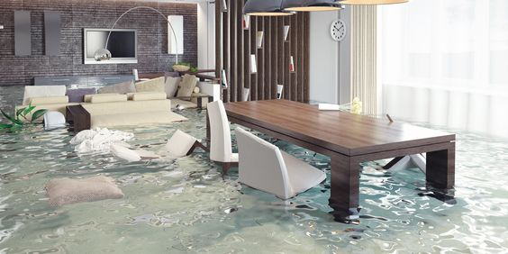 Pin On Water Damage Restoration