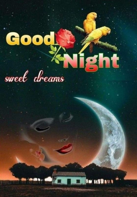 Sweet good night pics