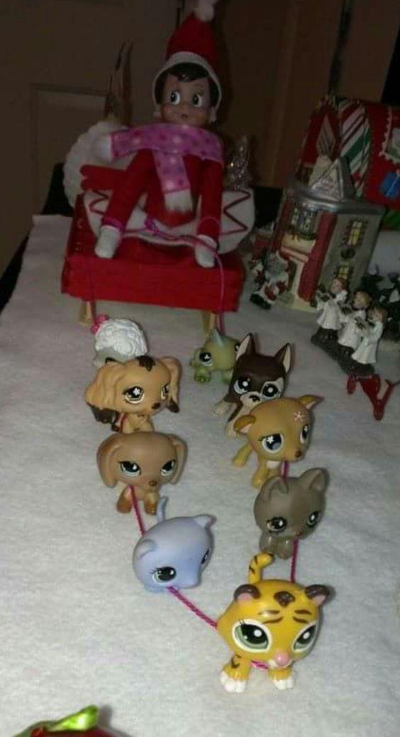 Little pet shop sled