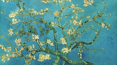 almond branches. vincent van gogh