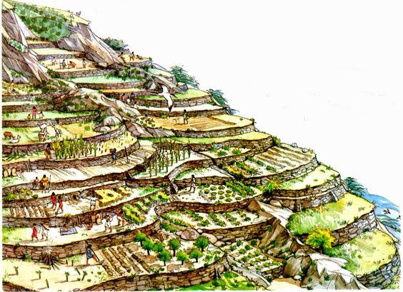 El Imperio Inca 18e75389c926bf705040b738179fc731