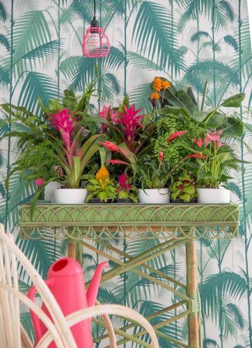 Style tropical - papier peint à motif feuilles de palme. Autres idées déco sur…