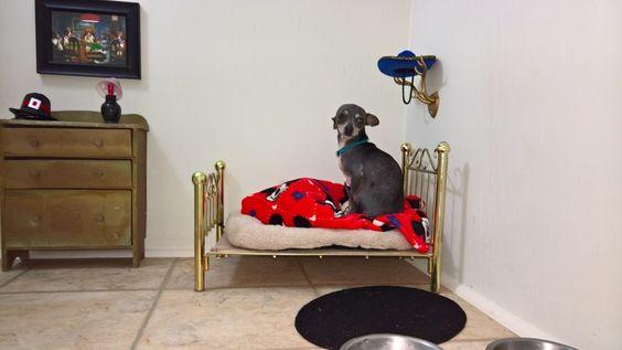 Su recamara cuenta con una cama, sus platos, su ropero y un cuadro de sus…