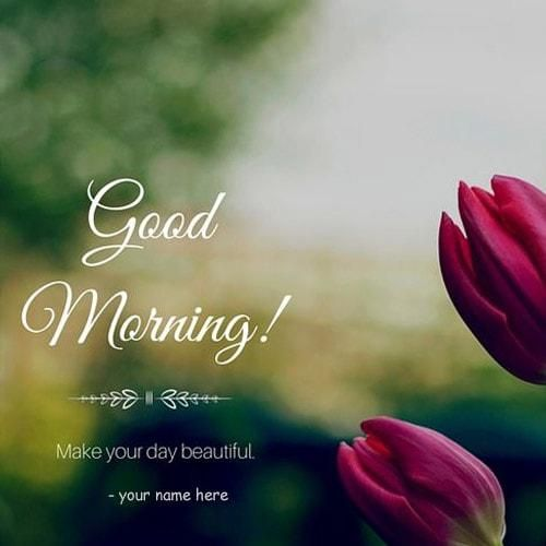 Good Morning Rose Images With Name Good Morning Rose Images Good Morning Roses Morning Rose