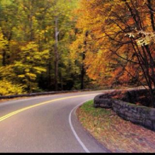 Beautiful drive in the smokies