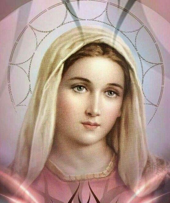 María es Arco del cielo, parece a la virgen Abisag, y es su oficio Animar a los afligidos.