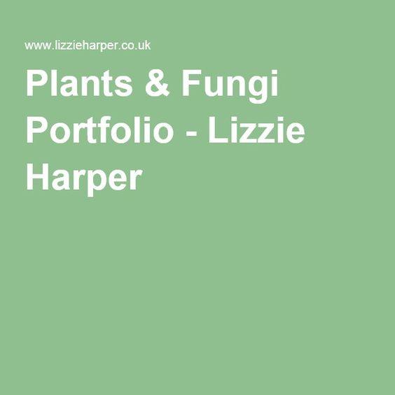 Plants & Fungi Portfolio - Lizzie Harper