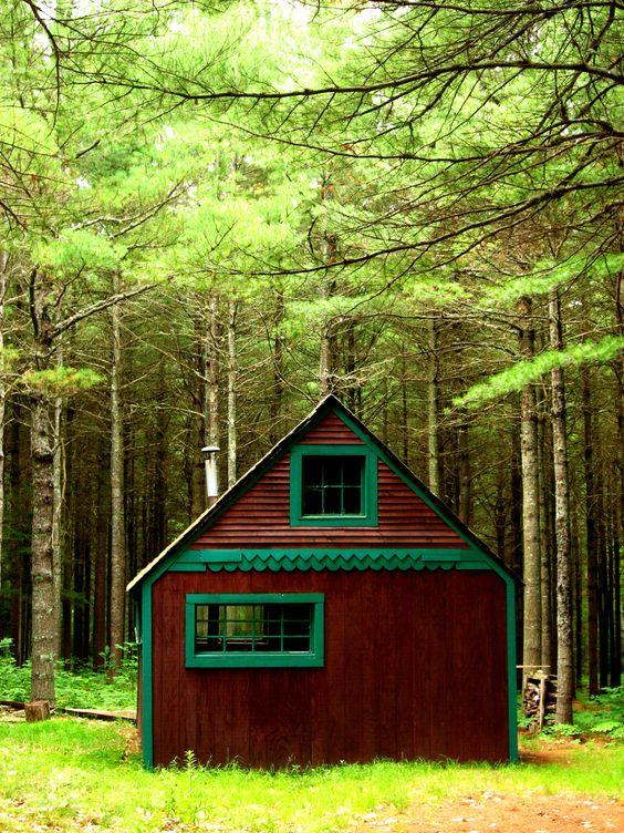 cutest little cabin