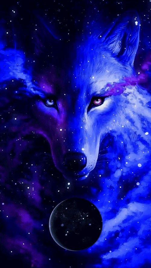 Cute Cool Galaxy Wolf