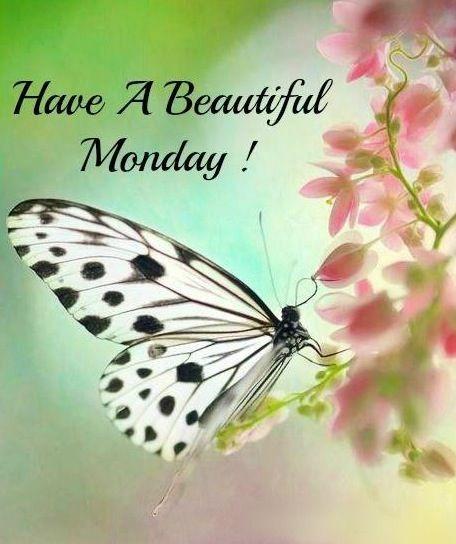 &acirc;&#152;&frac14; &aacute;&#131;&brvbar; Happy Monday!...<img src=