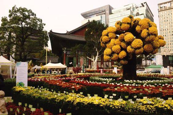 Temple Side Garden