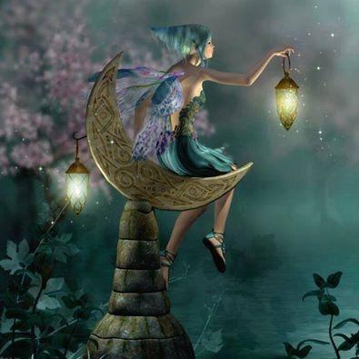 The Fairy Village's photo.