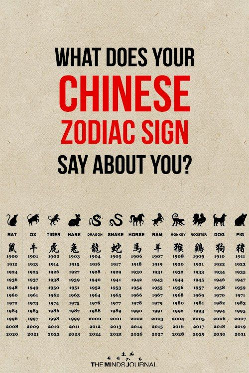 What Does Your Chinese Zodiac Sign Reveal About Your Personality
