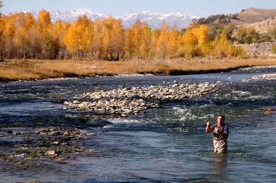 Flying river ranch in cody wyoming is a perfect example for Cody wyoming fly fishing
