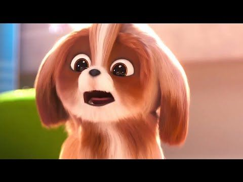 The Secret Life Of Pets 2 Daisy Trailer 2019 Animation Movie Youtube Secret Life Of Pets Pets Chill Out Music