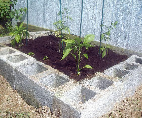 Concrete Block Garden Bed: Concrete Block Vegetable Garden