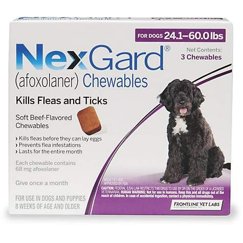 Nexgard Chewables Purple For Dogs 24 1 To 60 Lbs 3 Pack Flea