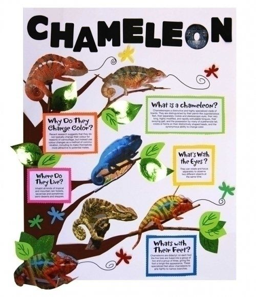 how to make chameleon dope