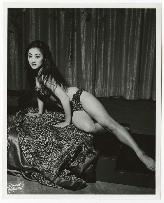 hollywood asian escort reading