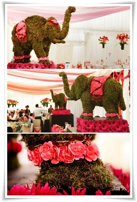 Wedding indian theme and elephant decorations on pinterest