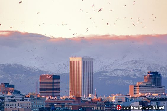 Torre Picasso con la nieve de la Sierra como escenario.  El clima de Madrid es de los más saludables de Europa, ya que se encuentra próximo a las Sierra de Guadarrama en la parte noreste y las montañas de Somosierra al norte y también noreste. Esto permite por un lado ofrecer aire limpio a la ciudad. http://barriosdemadrid.net/madrid-en-invierno/ #Madrid #Invierno