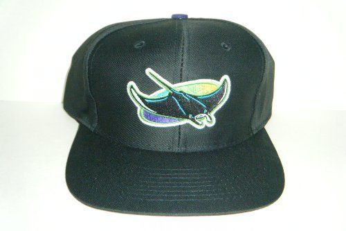 Tampa Bay Devil Rays NEW Vintage Snapback Hat Authentic Cap by Logo Athletic. $14.99