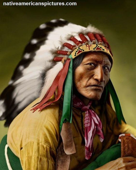 highly assimilated cherokee The cultural assimilation of native americans was an henry there is also a cherokee language immersion they had been highly organized and motivated by.