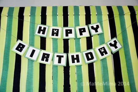 Boy Minecraft Birthday Party Backdrop Ideas