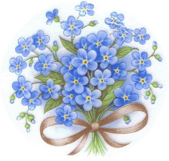 Forget-me-nots.:
