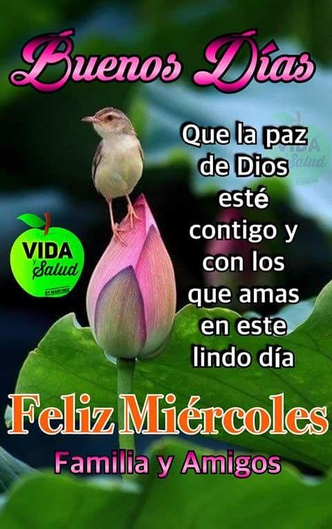 Buenos Dias Feliz Miercoles Frases Mensajes De Feliz Viernes