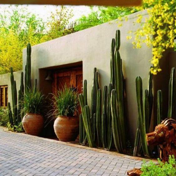 gartengestaltungsideen anlegen bilder modern kaktus  *JARDINES CON ...