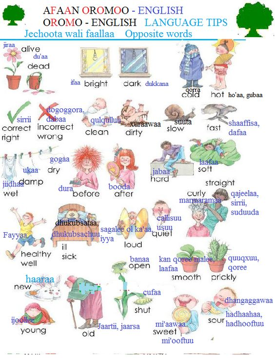 Number Names Worksheets list of opposite words with pictures : Pinterest • The world's catalog of ideas