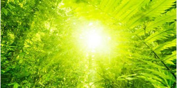 21-tage Meditationsprogramm Mit Deepak Chopra