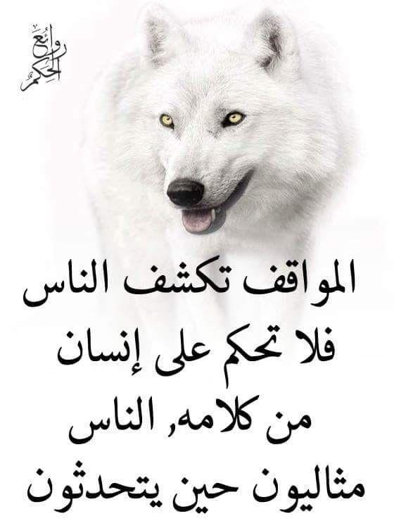 Pin By فلسطينية ولي الفخر On روائع الحكم Life Words Arabic Quotes Words