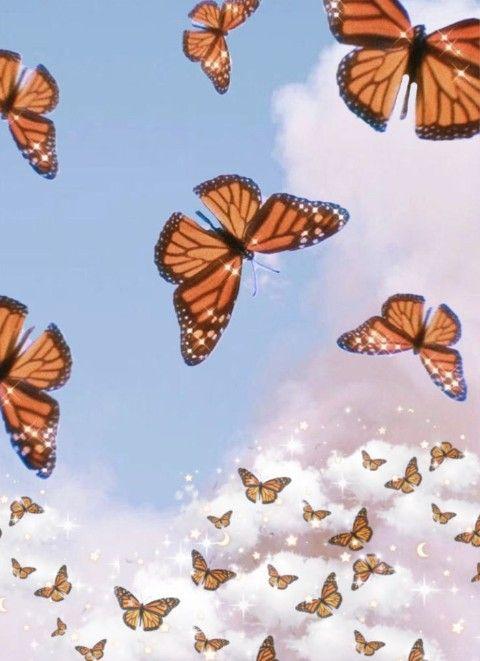 Butterflies Wallpaper Butterfly Wallpaper Iphone Butterfly Wallpaper Aesthetic Iphone Wallpaper