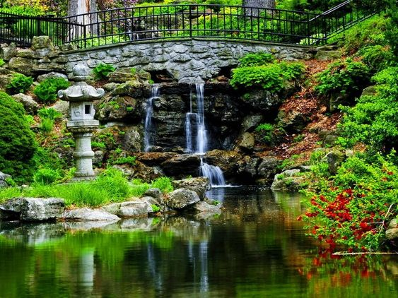 Cascade bassin de jardin en 18 id es de conception for Amenagement jardin reunion