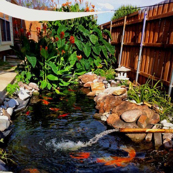 Pinterest the world s catalog of ideas for Koi pond rocks