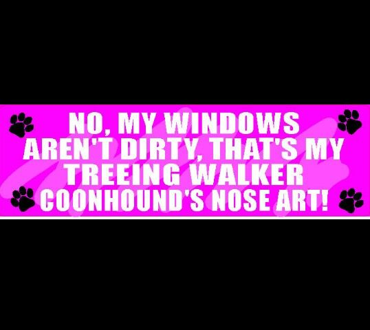 I love my treeing walker coonhounds