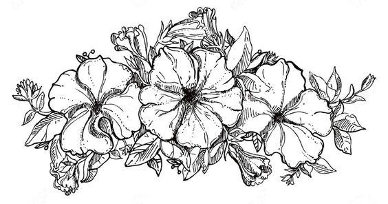 Wow 13 Sketsa Bunga Dan Vas Gambar Sketsa Bunga Harian Nusantara 62 Sketsa Vas Bunga Dan Bunganya Cara Membuat Vas Bunga Dari Botol Di 2020 Bunga Sketsa Bunga Ungu