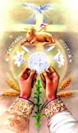 Eucharist: Feast of Wisdom
