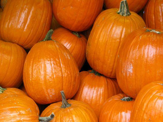 pumpkins in Mexico
