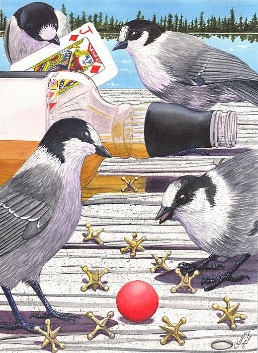 """New watercolor """"Jacks"""" I decided to portray Gray Jays, commonly called """"Whiskey Jacks"""" along with a few other types of jacks. If you enjoy my artwork please """"like"""" my FB page at https://www.facebook.com/CatherineMcelroyArt  Thanks. #artforsale"""