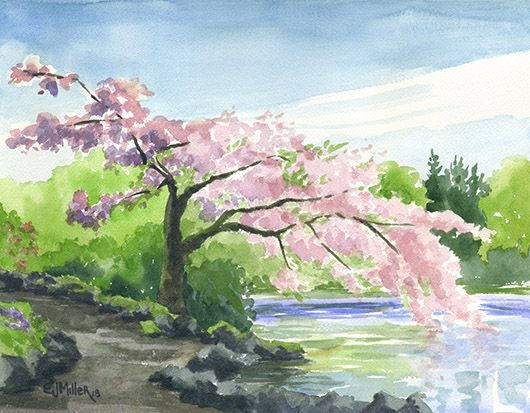 Cherry Tree Over Crystal Springs Lake Oregon Art By Emily Miller